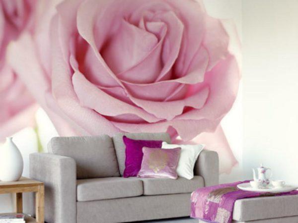 Большая розовая роза на стене