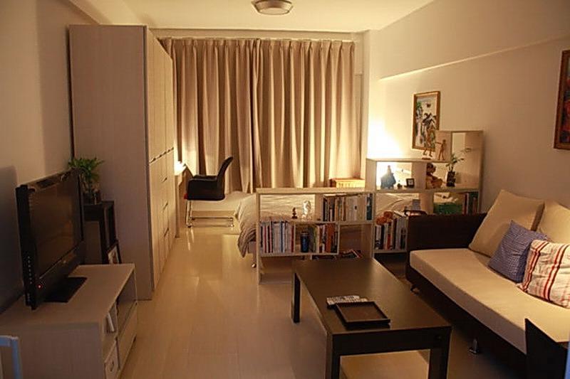 Гостиная спальня в одной комнате 20 кв м фото
