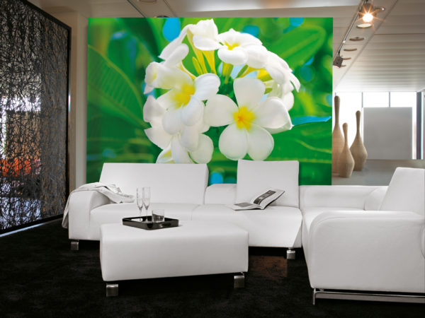 Белые цветы на обоях