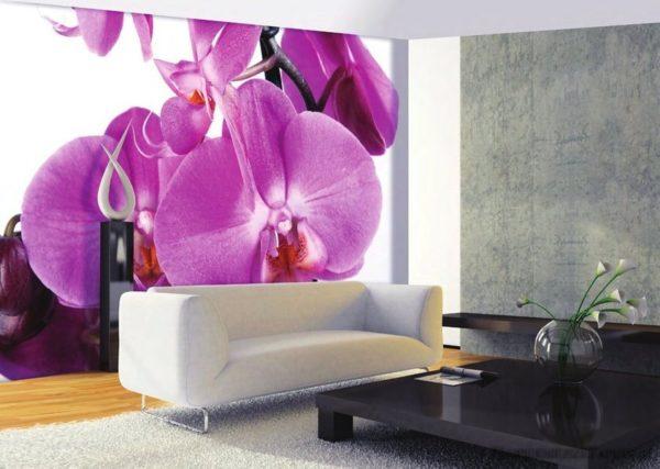 Большие орхидеи на стене в гостиной