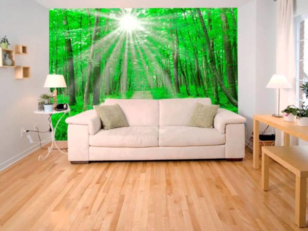 Летний лес с ярким солнцем в интерьере