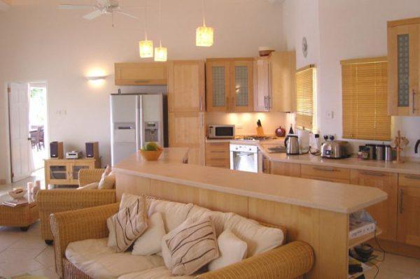 Эко-стиль в гостиной-кухне