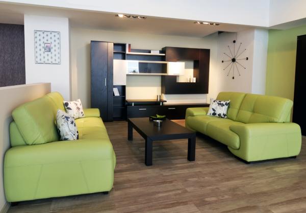Два зелёных дивана в интерьере