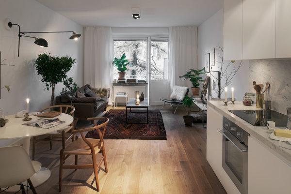 Гостиная-кухня 17 кв.м