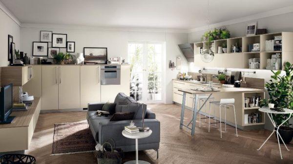 Не разделённые кухня с гостиной